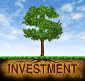 Investimento e crescimento financeiro — Foto Stock