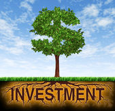 Investment and financial growth — Foto Stock