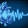Heart and EKG  ECG Graph - Stock Photo