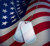 Dog Tags with An American Flag — Stock Photo