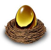 Nest Egg — Stock Photo