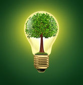 Environmental Ideas — Stock Photo