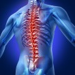Foto de Stock  : Human-Back-Pain