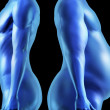 Human Body Shape Comparison — Stock Photo