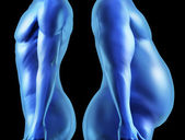 Human Body Shape Comparison — Stock Photo