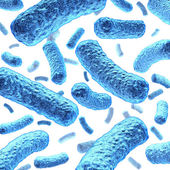 Bacterium and Bacteria — Stock Photo