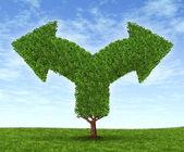 Growing Business Dilemma — Stock Photo
