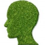 Brain Health and Memory Function — Stock Photo #9996284