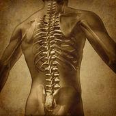 人間のバック グランジ テクスチャ — ストック写真
