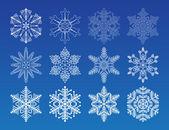 Snowflake winter set vector illustration — Stock Vector
