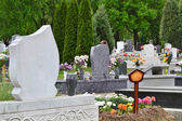 Cemetery with flowers — Stock Photo