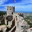 Stock Photo: Castle of the Moors, Sintra, Portugal landmark