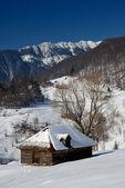 Carparthian paisaje, invierno — Foto de Stock