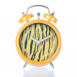 Antique clock tiger coloring. On a white background. — Stock Photo