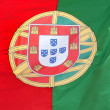 Royalty-Free Stock Photo: Portuguese flag in the wind.