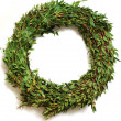 Wreath — Stock Photo #8186353