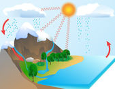 Water cycle — Stockfoto
