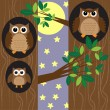Family owls at night — Imagen vectorial