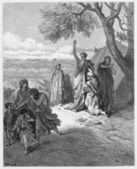 Noah cursing Canaan — Stock Photo
