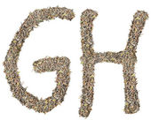 Letter G H with tea leaves — Stock Photo