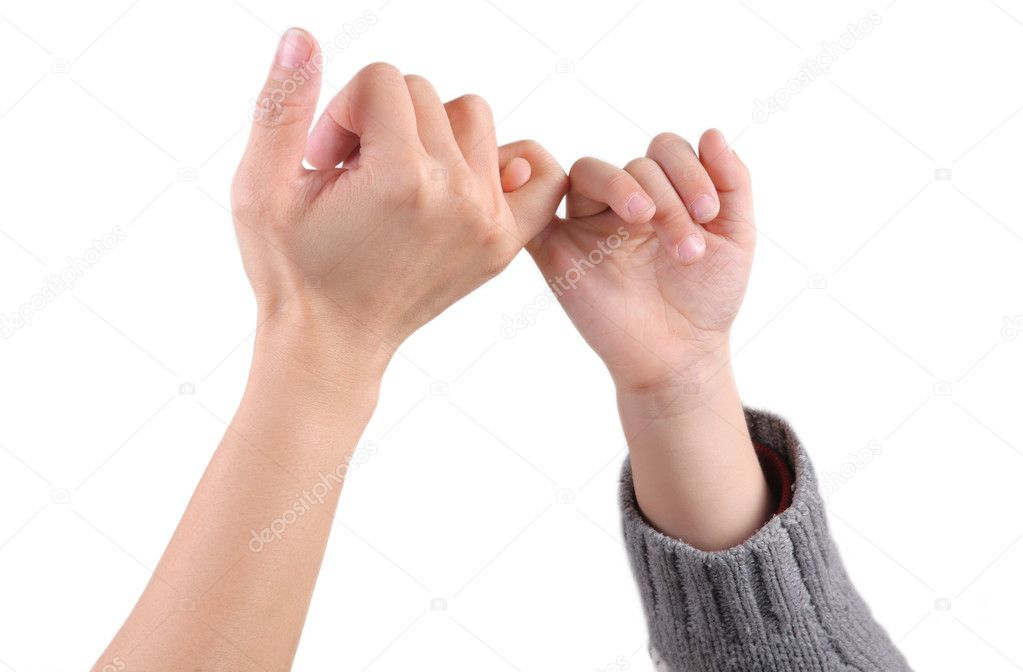 A adult holds child's hand white isolated  Stock Photo #8836976