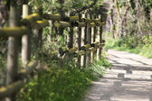 Zaun in der natur — Stockfoto