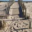 Stock Photo: Path to sea