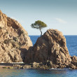 Tossa de Mar - Stockfoto