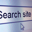 Closeup of website element reading: Search site — Stock Photo #8005885