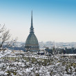 Winter cityscape: Mole Antonelliana and Turin, Italy — Stock Photo