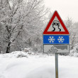 Stock Photo: Danger street sign for severe weather conditions