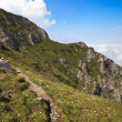 Path on a mountain slope - Foto Stock