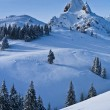 Mountain top in winter — Stock Photo #8069770