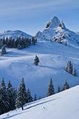 Szczyt góry zimą — Zdjęcie stockowe