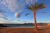 Soluppgång på stranden — Stockfoto