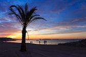 Nascer do sol na praia — Fotografia Stock