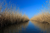 Lake water channel — Stock Photo
