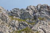 Mountain tourists — Stock Photo