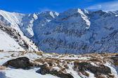 冬山风景 — 图库照片