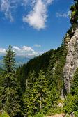 Mountain slope — Stock Photo