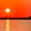 Stock Photo: Sunrise in Danube Delta
