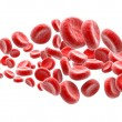 Blood cells on white background - Stock Photo