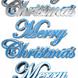 Christmas Greeting Card Elements — Stock Photo #8073318