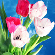 Spring tulips — Stock Photo #9102990