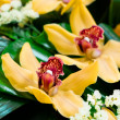 Beautiful yellow orchids composition — Stock Photo #9895094
