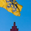 Stock Photo: Flag of Flanders and roof