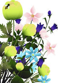 Букет полевых цветов — Stock Vector