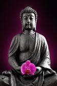 Buddha Buddhismus orchidee wolken Statue Gott Feng-Shui Asien — Stock Photo