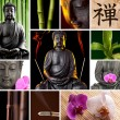 Buddha Zen Asia Collage — Stock Photo