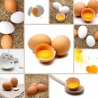 Eggs Collage — Stock Photo